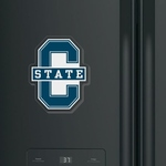 C-STATE ARYLIC MAGNET